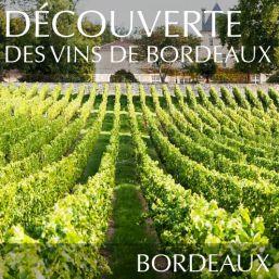Découverte des vins de Bordeaux à Nantes
