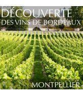 Découverte des vins de Bordeaux à Montpellier