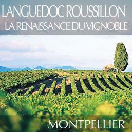 Languedoc Roussillon la renaissance du vignoble