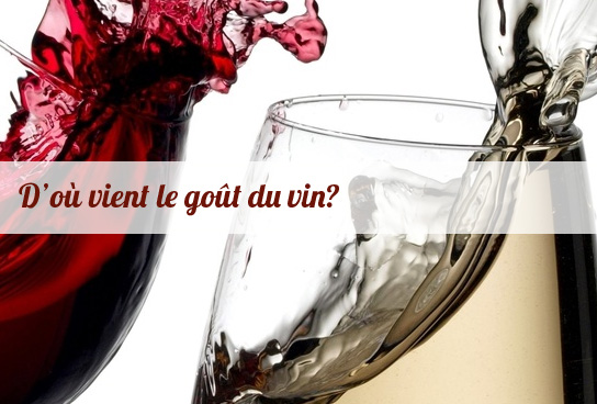 gout vin