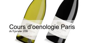 Les 2 vins Sud Africains dégustés à Paris durant le stage