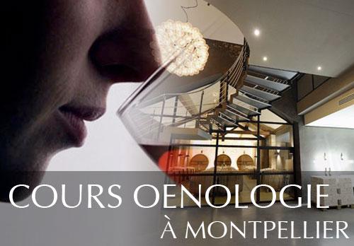 Cours d'oenologie à Montpellier et dégustation